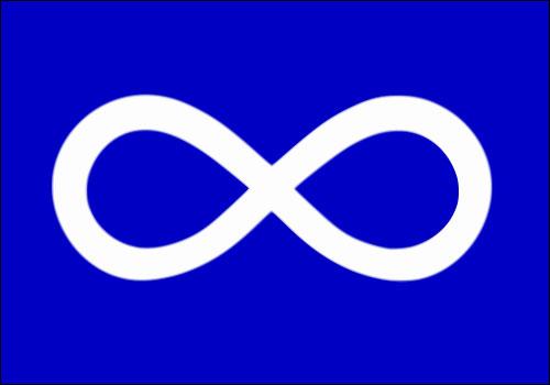 mnsflag-election-201705